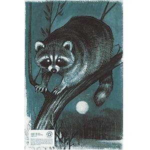 MLP Auth Raccoon Face