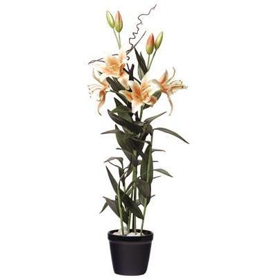 Lilly Silk Plant W/Blue Pot