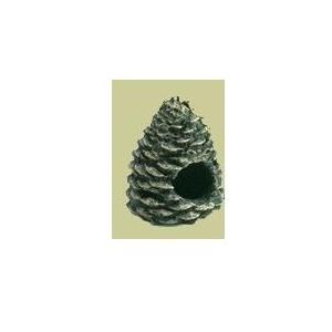 Hargrove Replacement Crackling Pine Cone